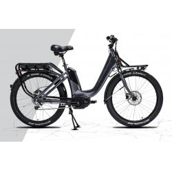 Biciclette ElettricheGEPIDACARGO special, ruote 26 modello 2017