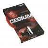 Racchetta Cesium WRB